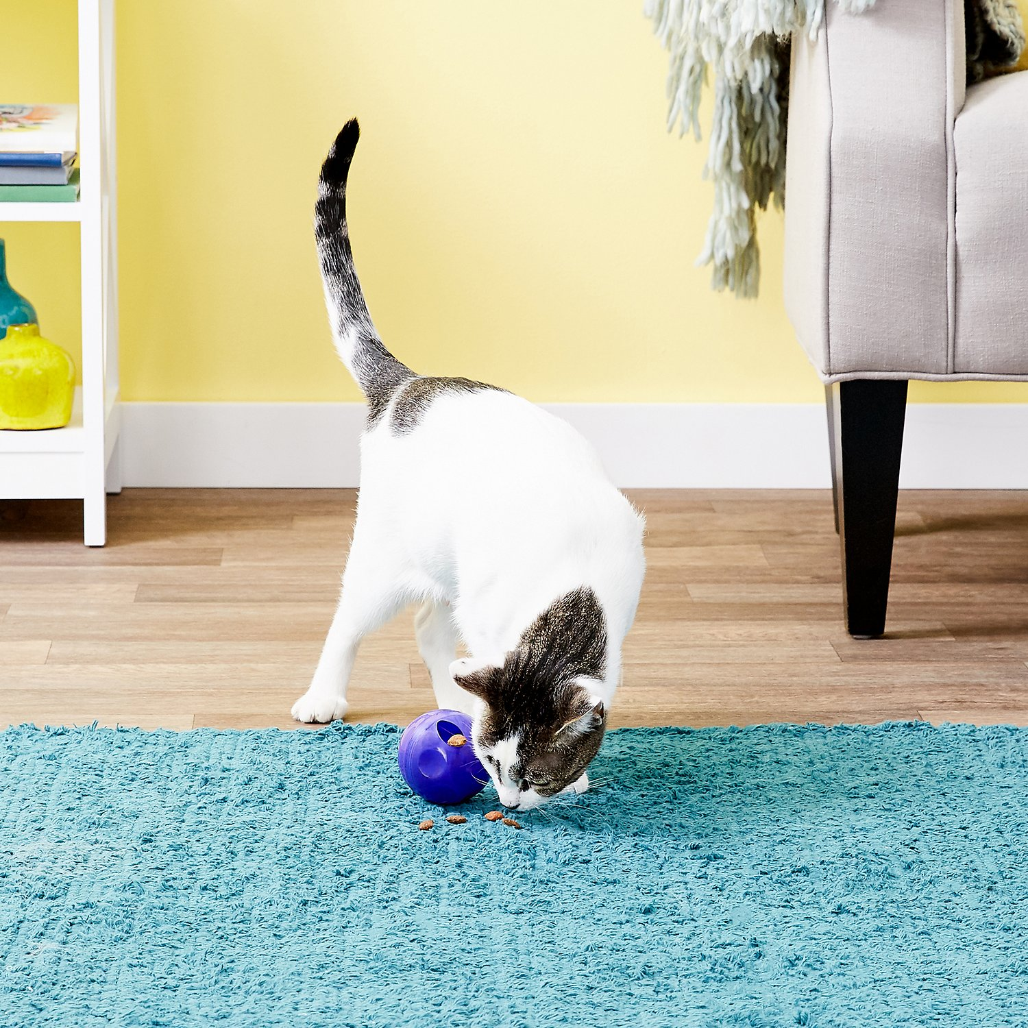 Kong Active Treat Ball Cat Toy Chewy Com