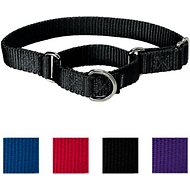 PetSafe Premier Martingale Dog Collar, Black, Large, 1-inch