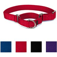 PetSafe Premier Martingale Dog Collar, Red, Large, 1-in