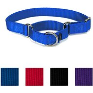 PetSafe Premier Martingale Dog Collar, Royal Blue, Small, 3/4-in