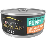 Purina Pro Plan Focus Puppy Classic Chicken & Brown Rice Entree Canned Dog Food, 5.5-oz, case of 24