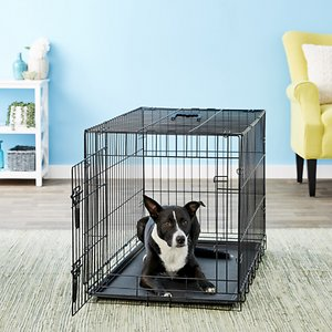 Four Paws Deluxe Single Door Collapsible Wire Dog Crate