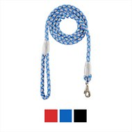 Four Paws Nite Brite Reflecting Dog Leash, Blue, Large
