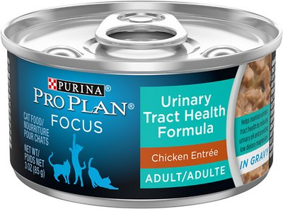 1. Purina Pro Plan Focus Wet Food