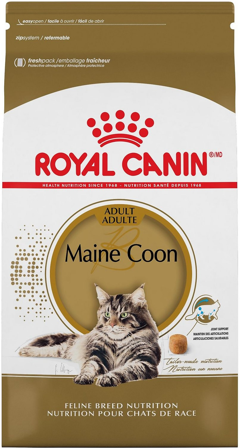 Royal Canin Maine Coon Dry Cat Food, 6-lb bag