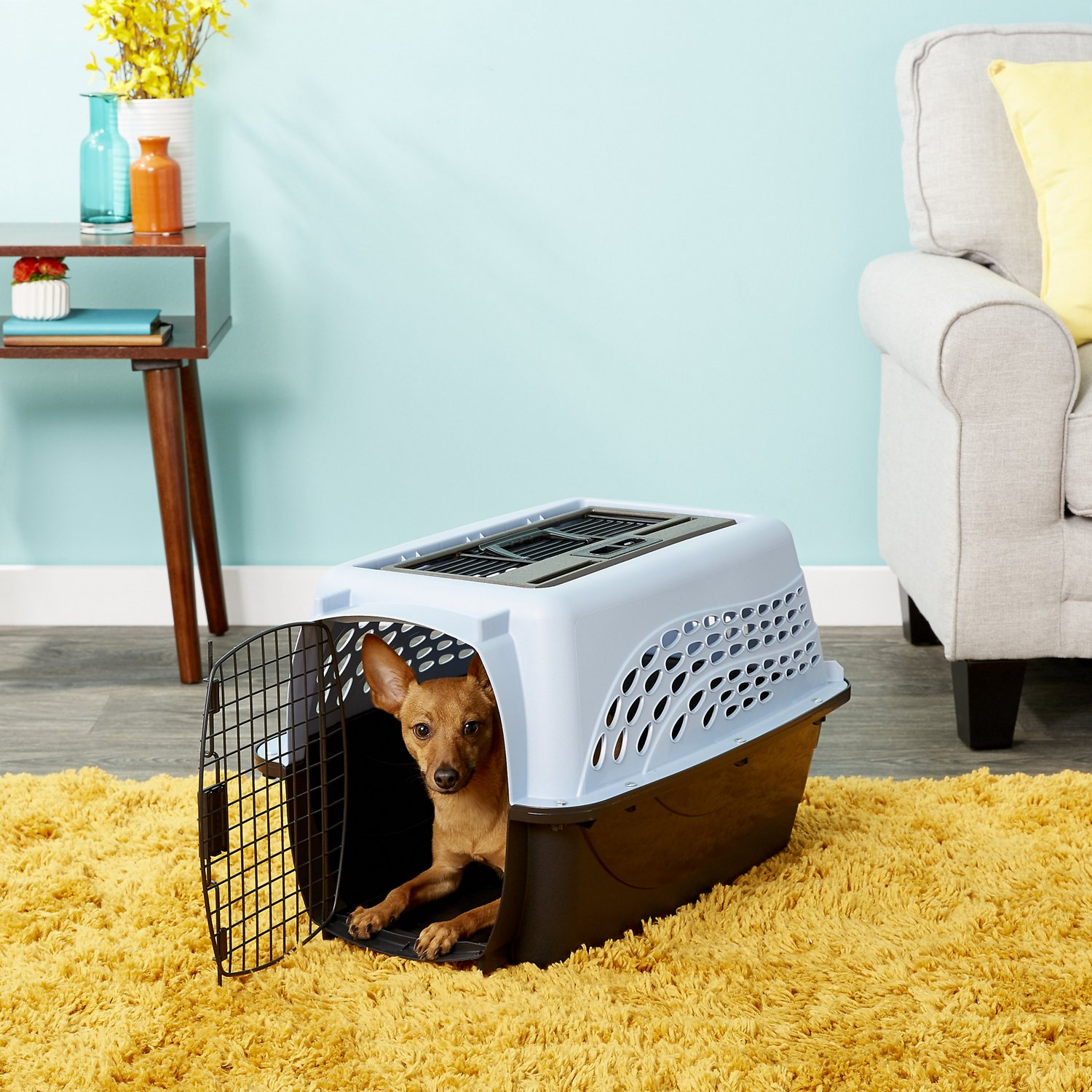 Petmate Two Door Top Load Pet Kennel Medium Blue Chewy