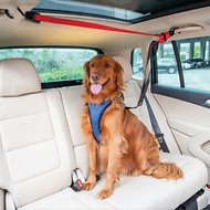 PetSafe Happy Ride Dog Vehicle Zipline