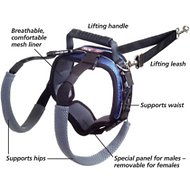 Solvit CareLift Rear Portion Lifting Aid Mobility Dog Harness, Large Blue