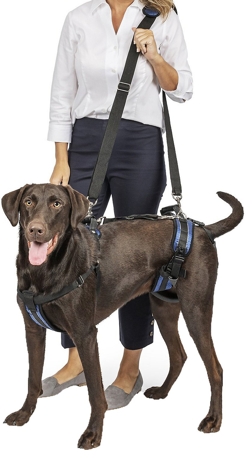 Solvit Carelift Full Front Back Lifting Aid Mobility Dog Harness Hover To Zoom