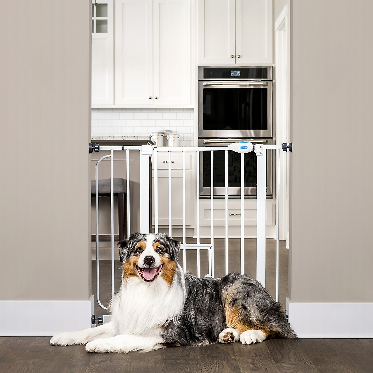 Carlson Pet Products Extra Wide Walk Thru Gate With Pet