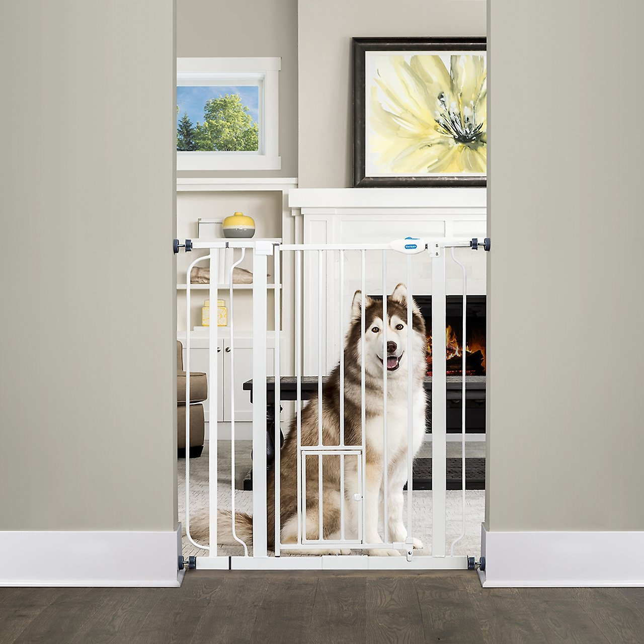 Carlson Pet Products Extra Tall Walk Thru Gate With Pet Door Extra