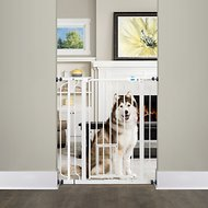 Carlson Pet Products Extra Tall Walk Thru Gate With Pet Door, Extra Tall