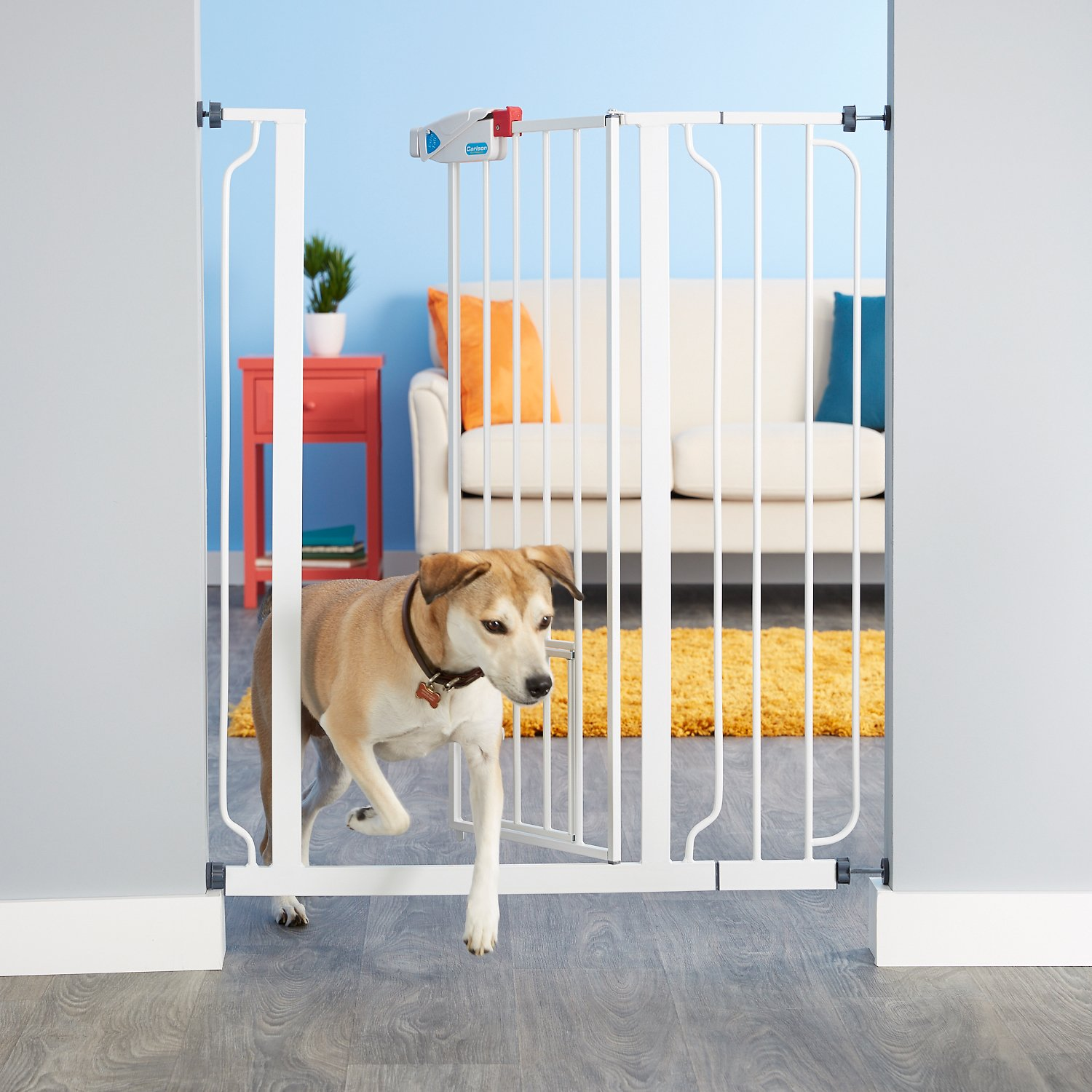 Carlson Pet Products Extra Tall Walk Thru Gate With Pet
