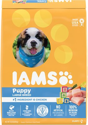 2. Iams Proactive Health Dry Dog Food