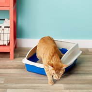 Van Ness Large Framed Cat Litter Pan, Blue, Large