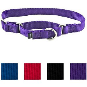PetSafe Premier Nylon Martingale Dog Collar, Deep Purple, Large: 14 to 20-in neck, 1-in wide; Used with a leash or with your hand, the martingale-style Premier Collar tightens to give greater control and reduces the risk of a dog backing out of his collar and escaping. Safer than a choke collar.