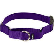 PetSafe Premier Quick Snap Martingale Dog Collar, Deep Purple, Large, 1-in