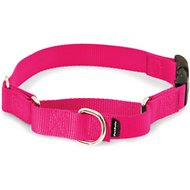 PetSafe Premier Quick Snap Martingale Dog Collar, Raspberry, Small, 3/4-inch