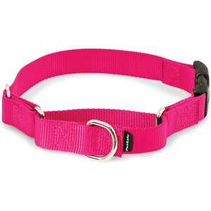 PetSafe Premier Quick Snap Nylon Martingale Dog Collar, Raspberry, Medium: 11 to 15-in neck, 1-in wide; This martingale-style dog collar has an added quick-release snap buckle for easier on and off. Martingale collars are safer than choke chains or prong collars. Used with a leash or with your hand, the martingale collar tightens when your dog pulls and loosens when he stops, so it's only tight when it needs to be. These collars give you greater control and reduce the risk of your dog slipping out and escaping.