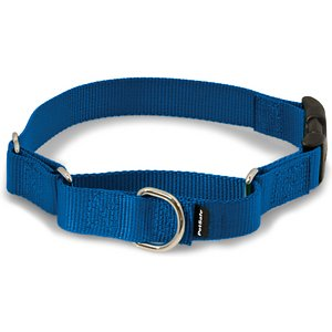 PetSafe Quick Snap Buckle Nylon Martingale Dog Collar, Royal Blue, Medium: 11 to 15-in neck, 1-in wide; This martingale-style dog collar has an added quick-release snap buckle for easier on and off. Martingale collars are safer than choke chains or prong collars. Used with a leash or with your hand, the martingale collar tightens when your dog pulls and loosens when he stops, so it's only tight when it needs to be. These collars give you greater control and reduce the risk of your dog slipping out and escaping.