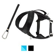 Kurgo Go-Tech Adventure Dog Harness with Seatbelt Loop, Black, Small