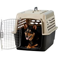 Petmate Vari Dog & Cat Kennel, Medium
