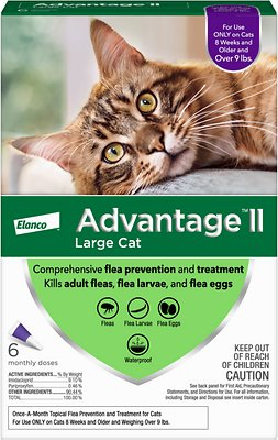 advantage ii flea treatment for large cats over 9 lbs 6 treatments rh chewy com
