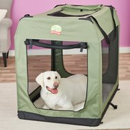 GoPetClub Soft Portable Pet Carrier, Sage, 48-in