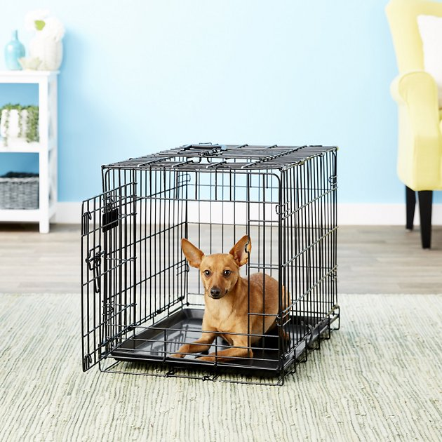 precision pet products great crate double door dog crate With precision pet products dog crate