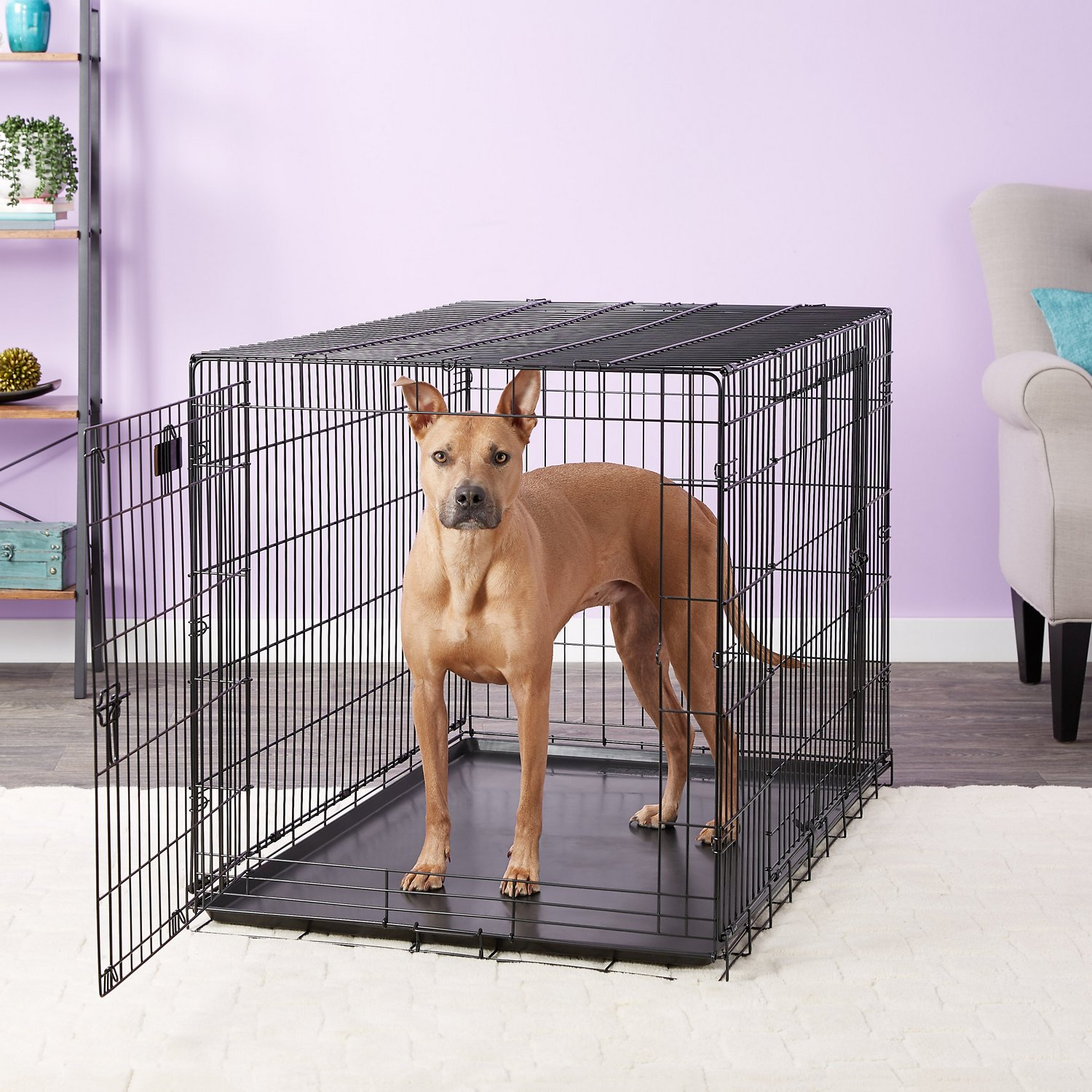 Precision Pet Products Great Crate Double Door Dog Crate X Large