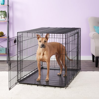 precision pet products great crate double door dog crate With precision large dog crate
