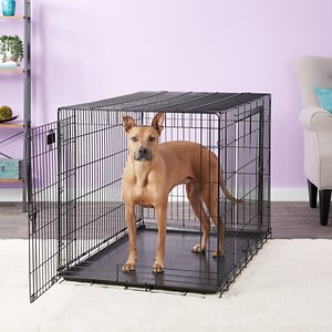Precision Pet Products Great Crate Double Door Collapsible Wire Dog Crate