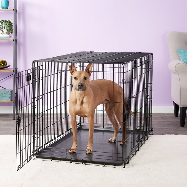 Precision Pet Two-Door Great Crate