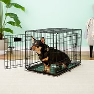 Precision Pet Products Provalu Double Door Dog Crate, Medium