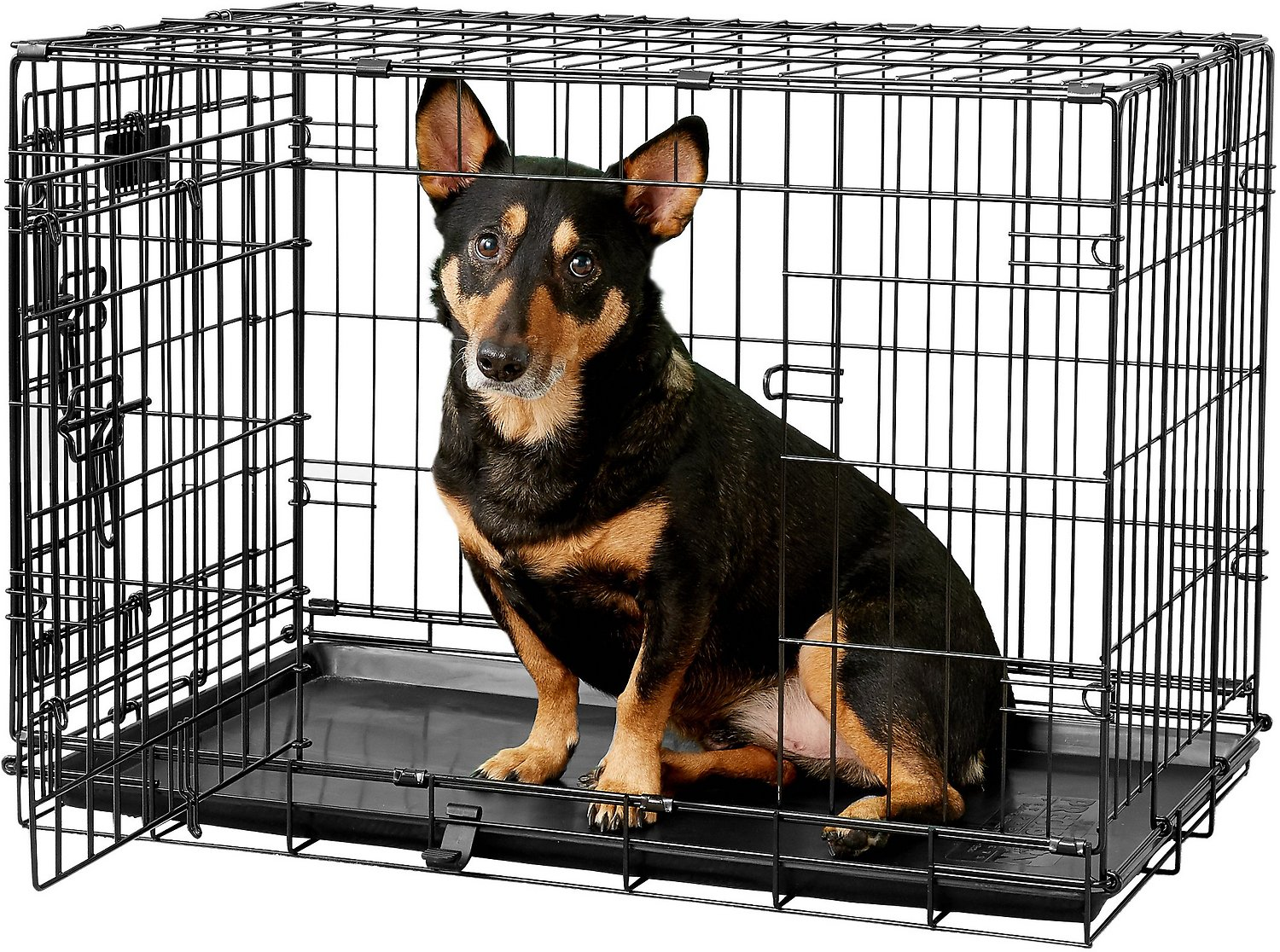 Precision Pet Products Provalu Double Door Dog Crate