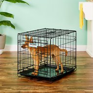 Precision Pet Products Provalu One Door Dog Crate, Small