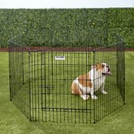 Precision Pet Products Ultimate Exercise Pen with Door, Small