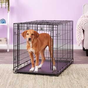 MidWest Ovation Single Door Collapsible Wire Dog Crate, 37 inch; When used properly, a dog crate mimics your dog\\\'s desire to find a safe and secure den and it should feel like a safe place for your dog. Ovation Dog Crates are wire models and they allow your dog a great view out and provide good airflow through the crate vs. the stifling plastic walls of many other crate styles. The sliding door dog crate design allows you to leave the crate open. Your dog can come and go as she pleases when you are around the house. Just slide the door back into place when you need to keep him contained. Ovation Dog Crates features a free divider panel. The divider panel hooks over the vertical bars on the sides of the crate and allows you to adjust the size of the crate as your dog grows. Ovation Dog Crates are also heavier than the crates you often find making this sliding door crate a versatile, long-lasting product for you and your dog!