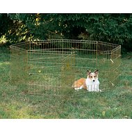 MidWest Exercise Pen with Step-Thru Door, Gold Zinc, 24-in