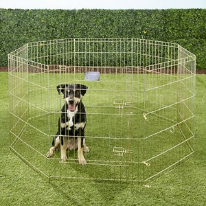 MidWest Wire Dog Exercise Pen with Step-Thru Door, Gold Zinc, 30-in