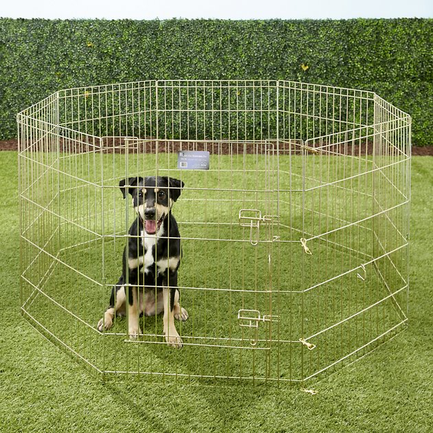MidWest Wire Dog Exercise Pen
