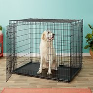 MidWest Solutions Series XX-Large Heavy Duty Double Door Dog Crate, XX-Large, 54-in