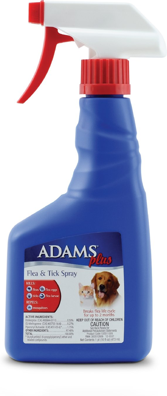 Adams Plus flea and tick spray application how to guide dogs and cats