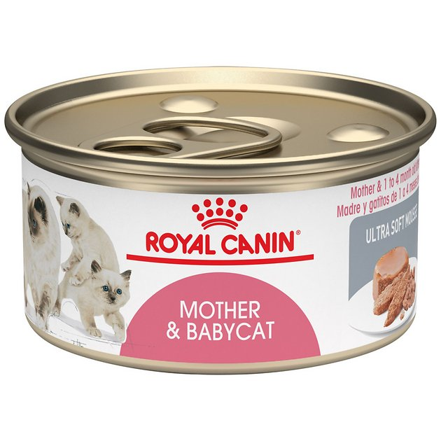 Royal Canin Mother Amp Babycat Ultra Soft Mousse Canned Food