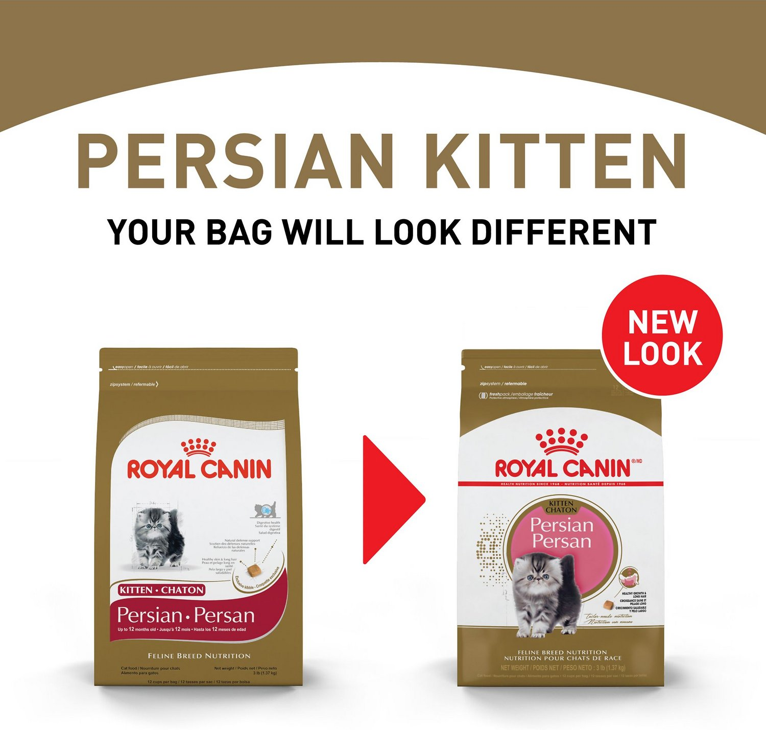 royal canin persian kitten dry cat food 3 lb bag. Black Bedroom Furniture Sets. Home Design Ideas