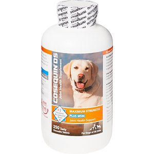 Nutramax Cosequin Maximum Strength Joint Health Supplement for Dogs
