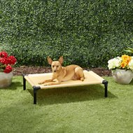 Starmark Dog Zone Pro-Training Dog Bed, Sunset Gold, Medium