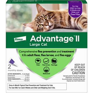 4 Best Topical Flea Treatments For Cats 2019 Fast
