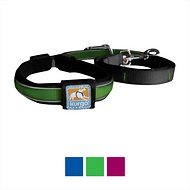 Kurgo Reflect & Protect Quantum Dog Leash, Green