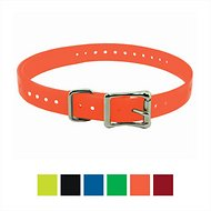"SportDOG 1"" Replacement Collar Strap for Dogs, Orange"